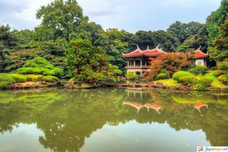 parque shinjuku gyoen en japon